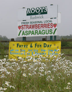 Sign for Farm shop selling Asparagus