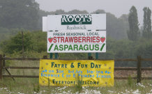 Asparagus on Farm Shop Sign