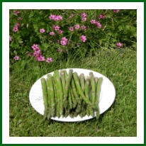 Asparagus with Flowers