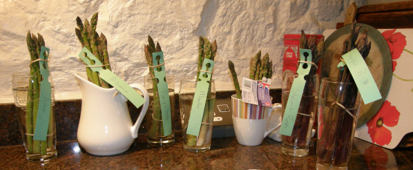 A range of Varieties of Asparagus for tasting